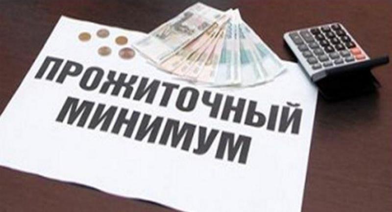 Прожиточный мини минимум вЛипецкой области составил неменее 8313 руб.