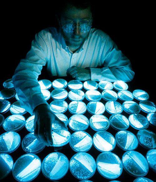 Ученые изРФ создали светящееся вещество для исследования фармацевтических средств