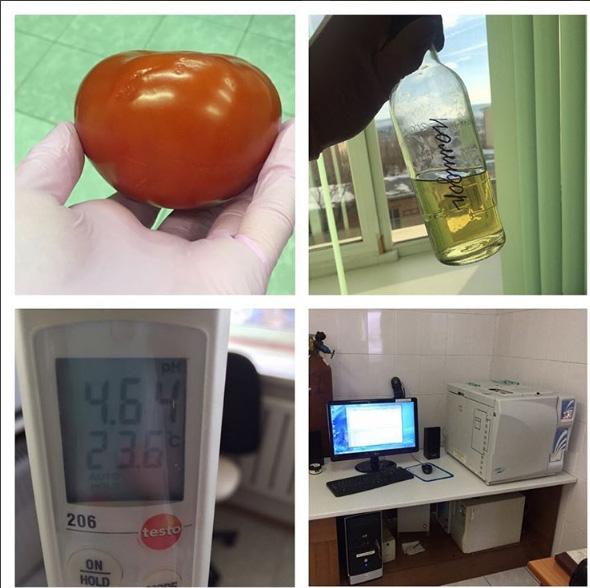 Красноярский ученый нашла впомидорах метиловый спирт иформальдегид