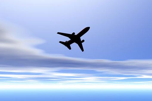 Экипаж посадил самолет спробитым подкрылком вКрасноярске