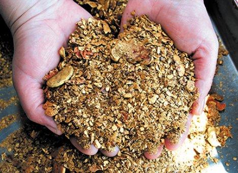 ИзКрасноярского края пытались незаконно вывезти золота наполтора млн.