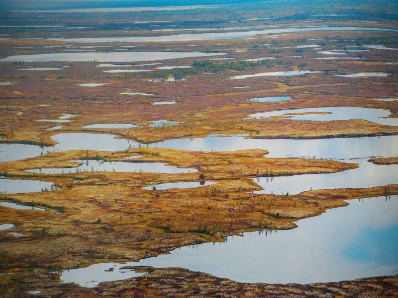Тундра Красноярского края увеличит выбросы газа в два раза