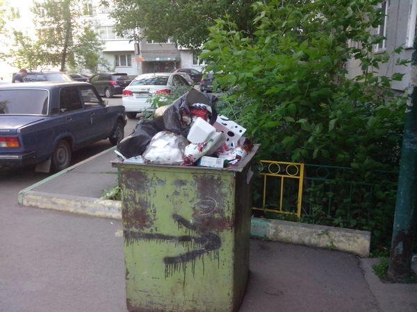 Специалисты WWF рассчитали «экологический след» красноярцев