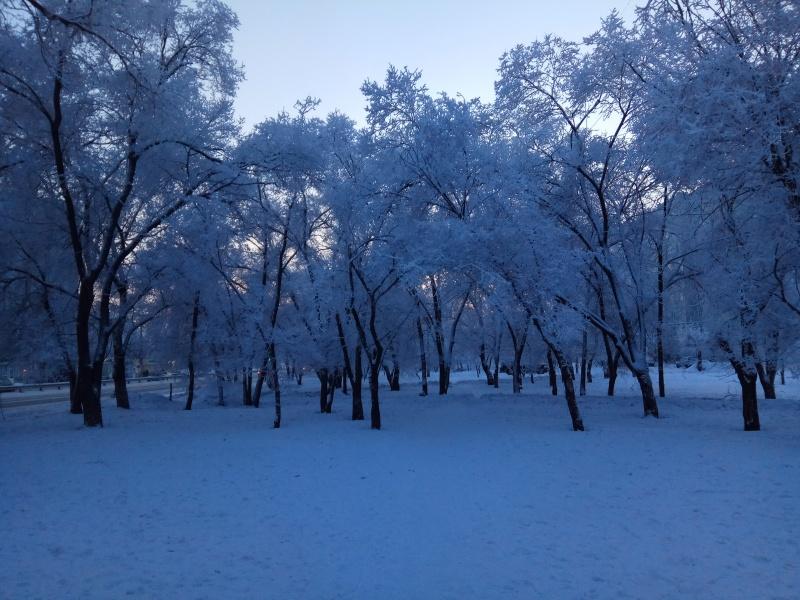 ВКрасноярск приходит аномальный холод